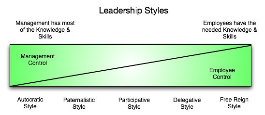directive style of decision making Every leader prefers a different way to contemplate a decision the four styles of decision making are directive, analytical, conceptual and.